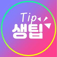 생팁-Tip