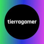 TierraGamer net worth