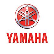 Yamaha Motor Europe net worth