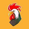 Old torn chicken