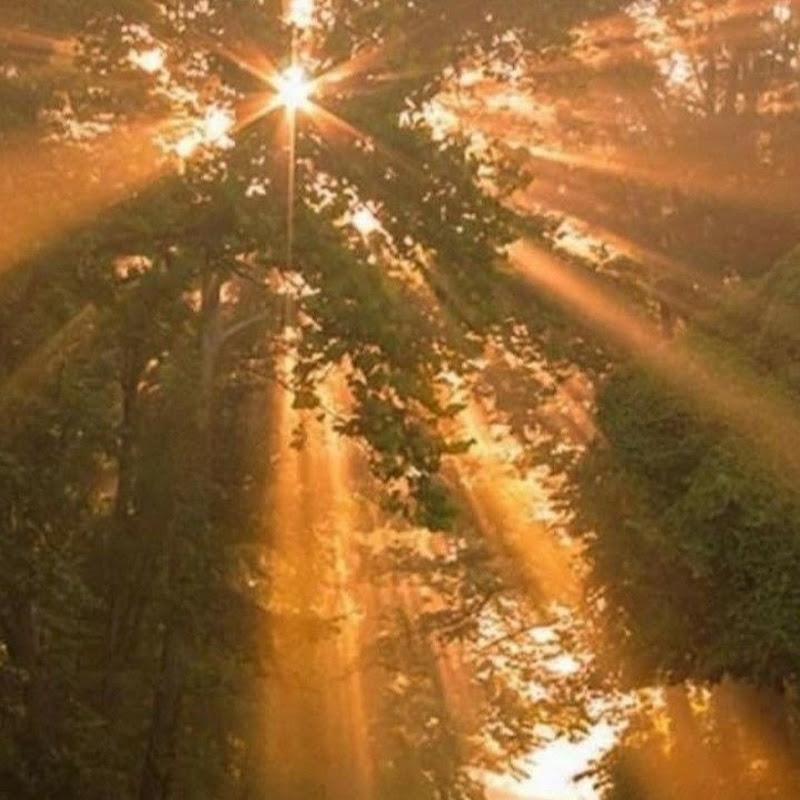 Natalia Anio