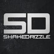 ShakeDrizzle net worth