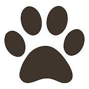 Perros Mundo