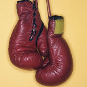 TheNYCAmateurBoxing net worth