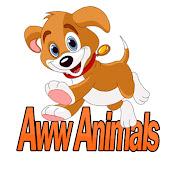 Aww Animals