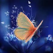 Life is Joy Avatar