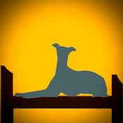 Greyhound Homecare