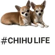 Chihu Life