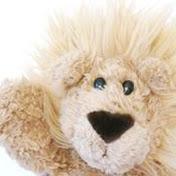 Lucky Lion Bear