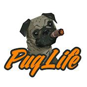 PugLife Entertainment net worth