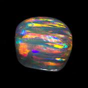Black Opal Direct net worth