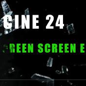 CINE 24 VFX net worth