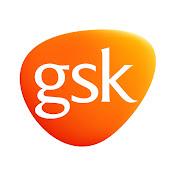 GSK net worth