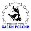 ХАСКИ РОССИИ