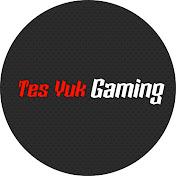 TeS Yuk Gaming net worth