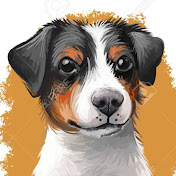 Which Dog Should I Get? Dog Breed Selector