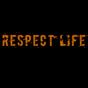Respect Life The Series net worth