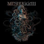 Meshuggah net worth