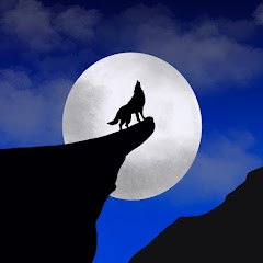 MalWired Gaming