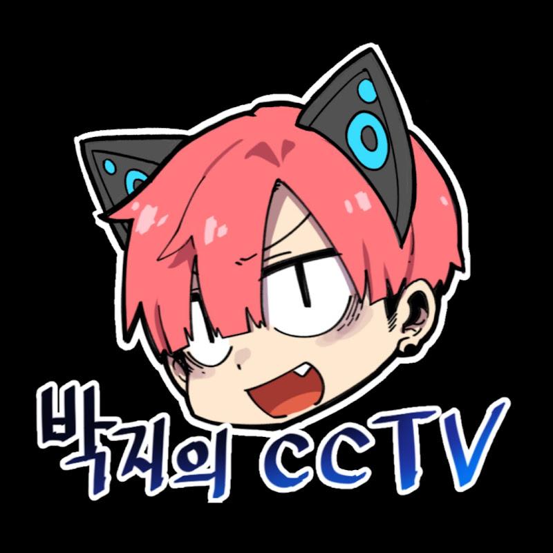 박지의 CCTV