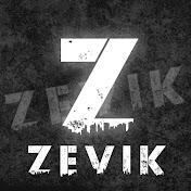 Zevik net worth