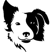 Rovers Makeover Dog Grooming